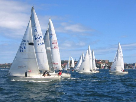 J-24_yacht_racing,_Sydney_Harbour